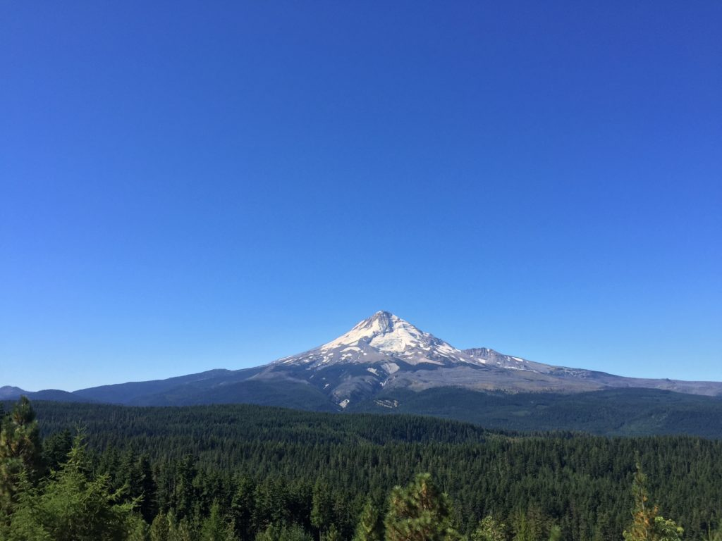 Many Mt. Hood views from the Wy'east Wonder course